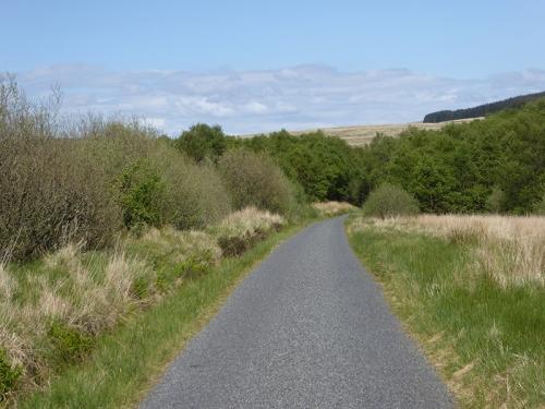 Rashiel road
