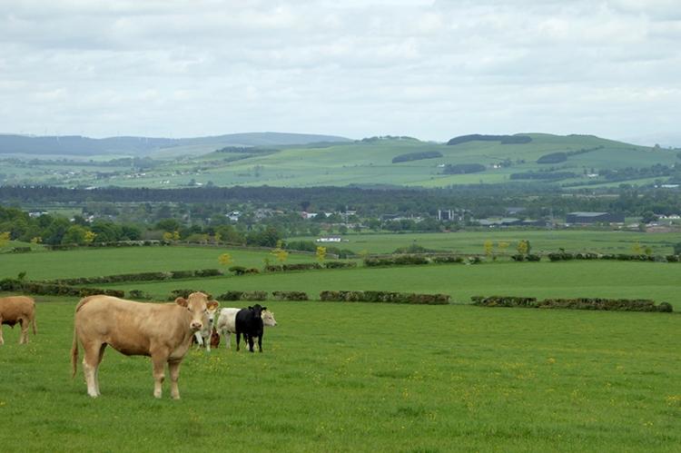 View over Lochar moss
