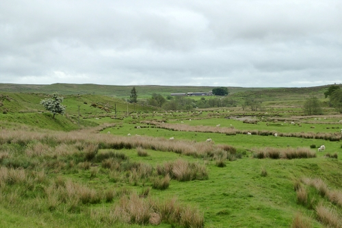 Cleuchfoot valley