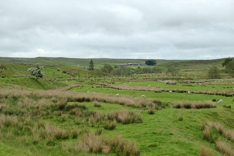 Cleuchfoot valley