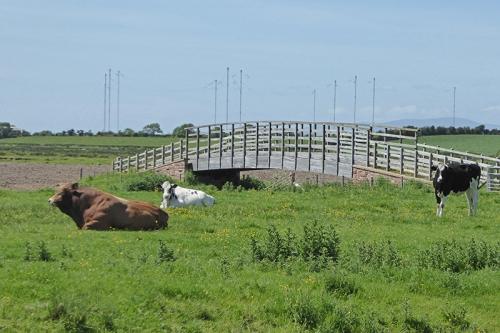 Anthorn and bridge