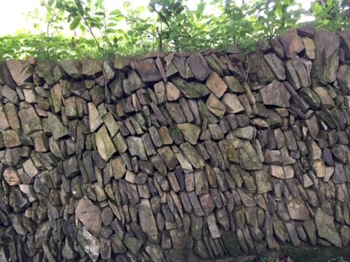 Devon wall