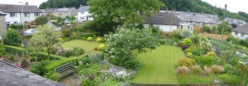 garden panorama June 17