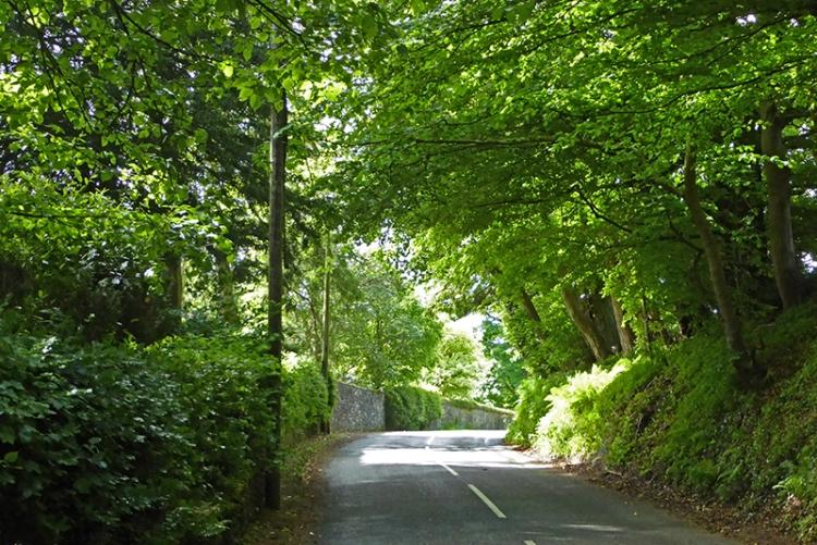 springhill