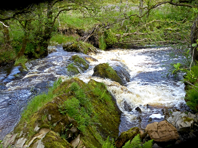 Wauchope Water cascade