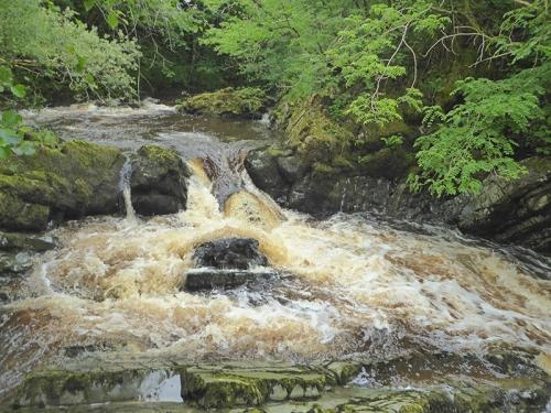 bessie bell's cascade wauchope water