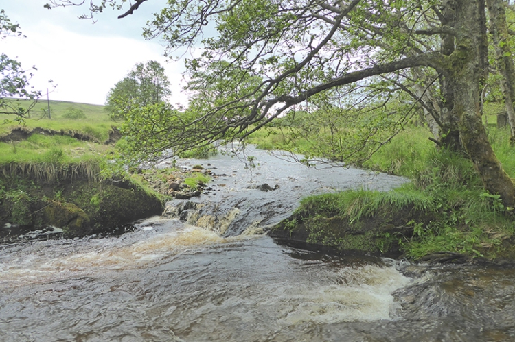 Bigholms Burn and Logan Water