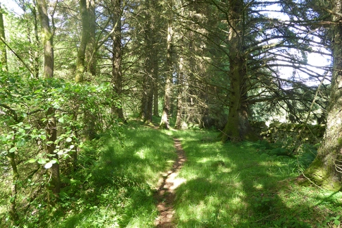 manure mountain path