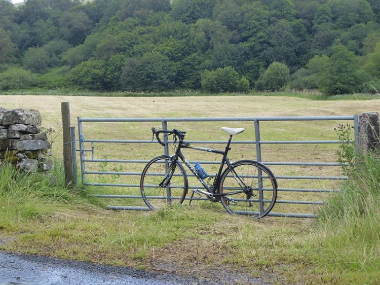Bloch field gate with bike
