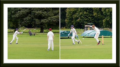 Cricket on the castleholm