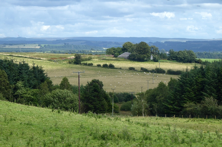 Looking down over the Esk valley from Tarcoon