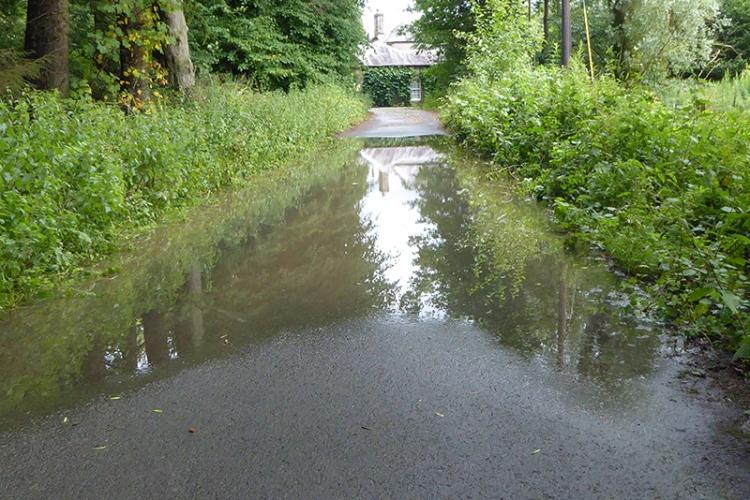 lodge puddle