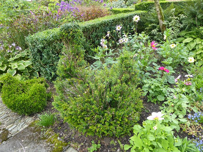 topiary chicken