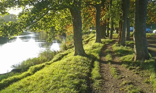 Rickerby park