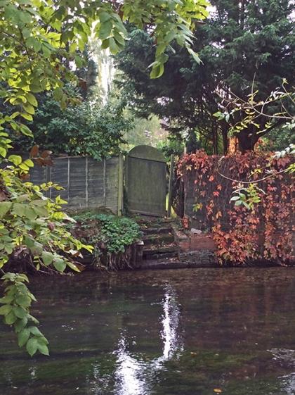 Mary Jo's gate