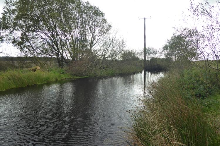 callister pond