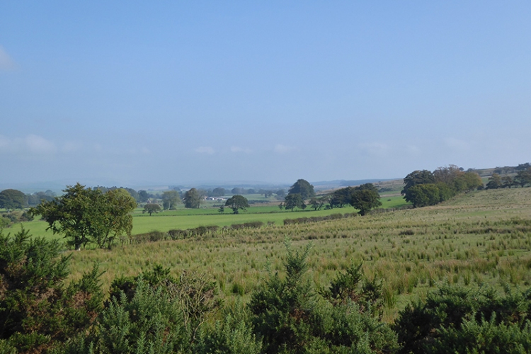 view near gair
