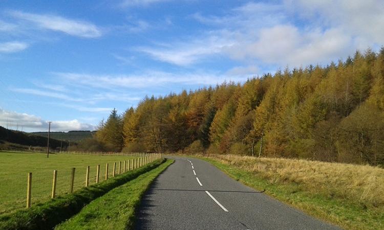 Bigholms road