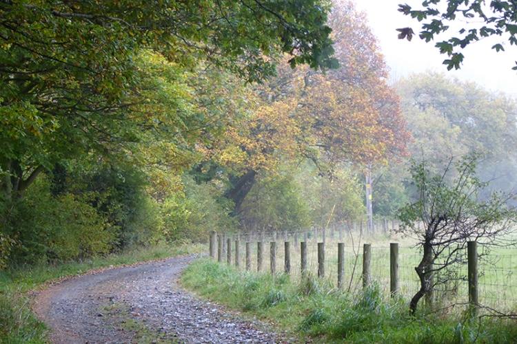 Murtholm track
