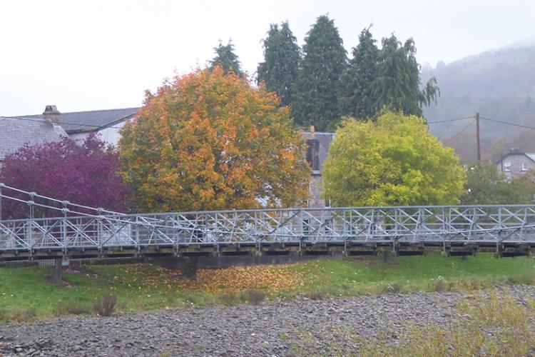 Suspension bridge trees
