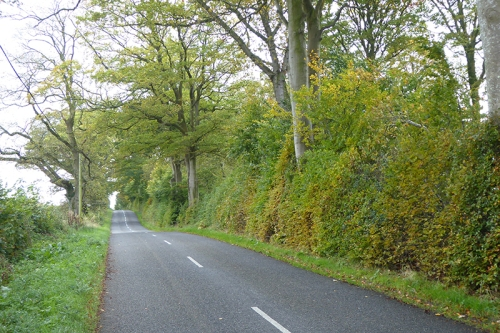 Brydekirk road
