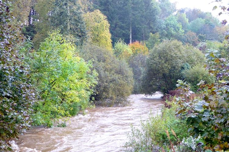 Wauchope in flood