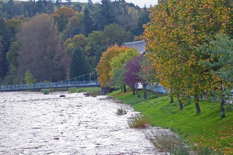 River esk in Autumn