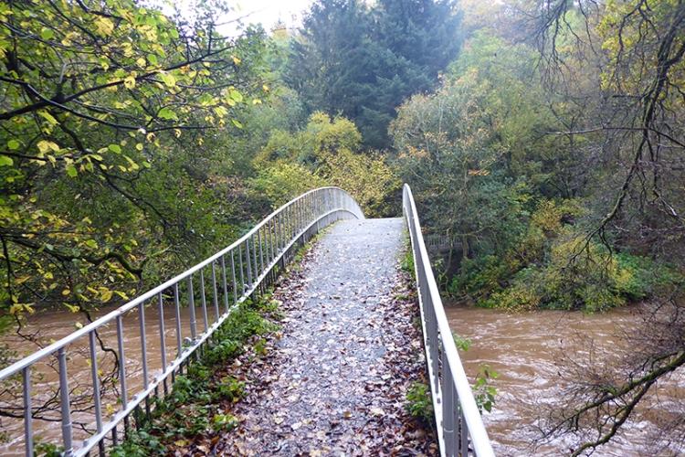 Duchess bridge in Autumn
