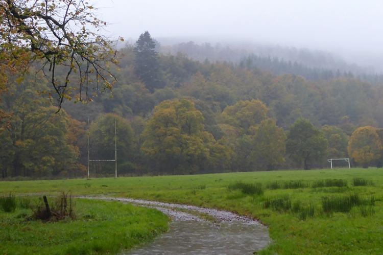 Misty on the castleholm