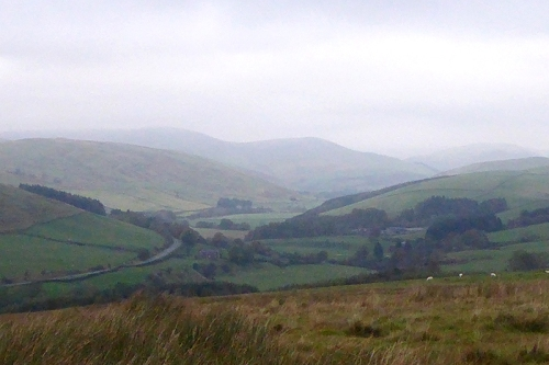 Ewes valley in mist