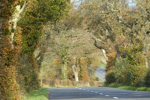 KPF road