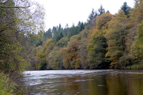 River Esk at Skippers