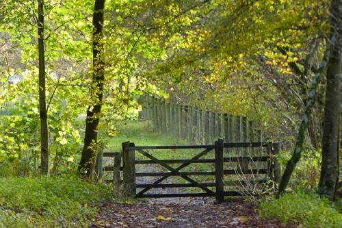Casteholm gate