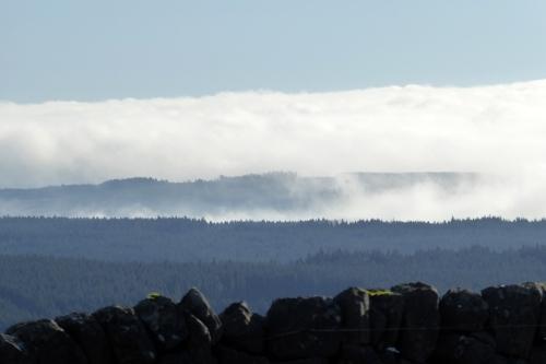 Eden valley in mist