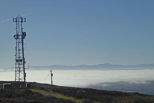 police mast and mist