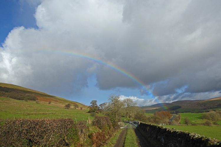 Rainbow on Pathhead track