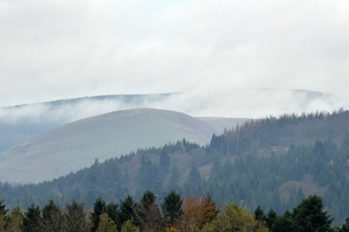 mist in the hills