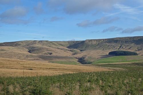 tarras track view
