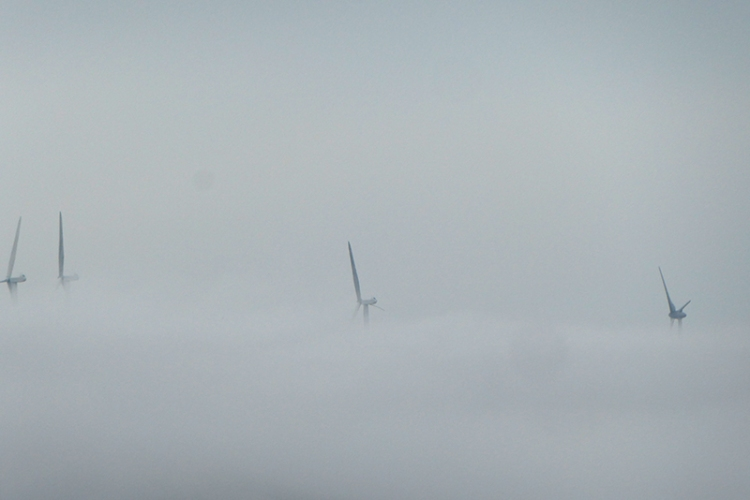 windmills in mist