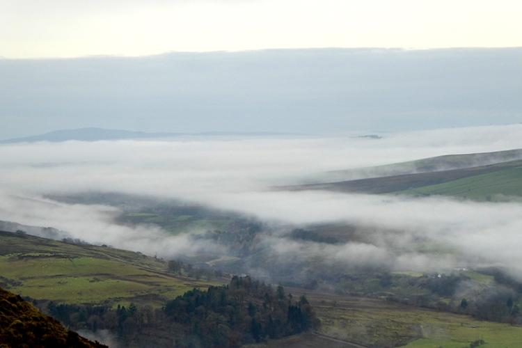 mist from Whita