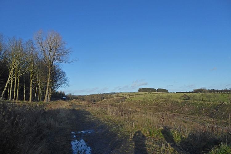Rowanburn railway track