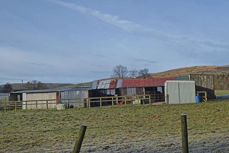 Stubholm stable