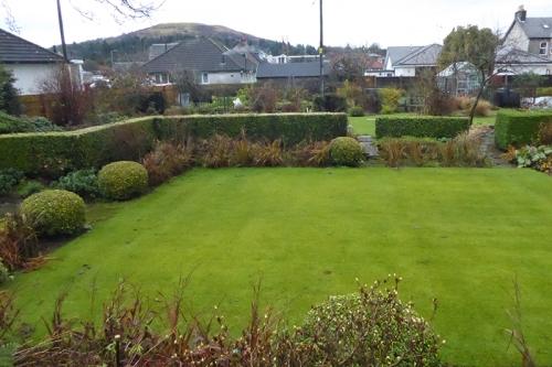 garden in November