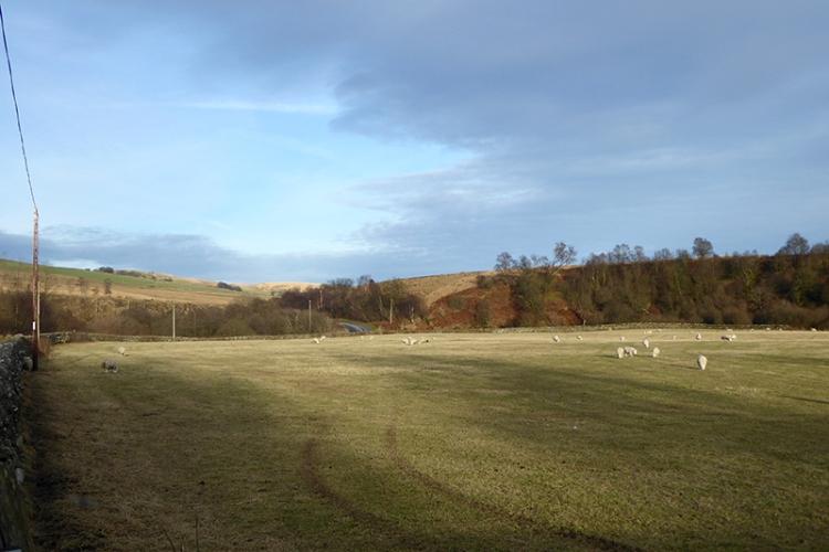 Wauchope field