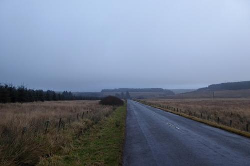 Callister in mist