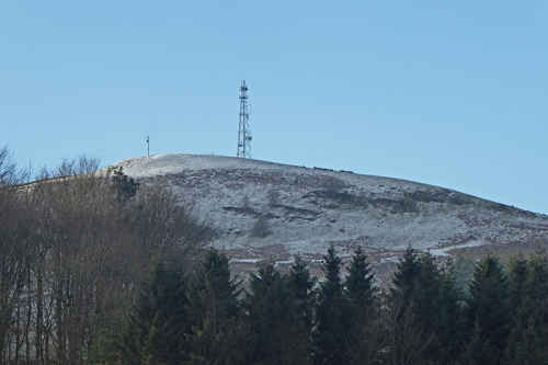 Warbla with snow