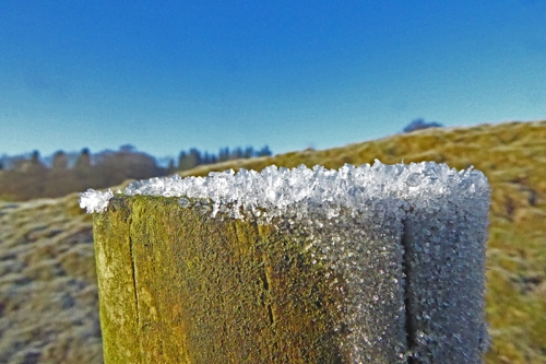 frozen fencepost