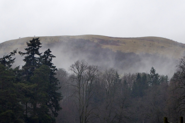 misty hill