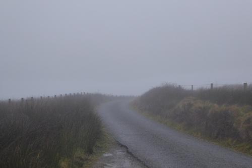 mist at Laverock