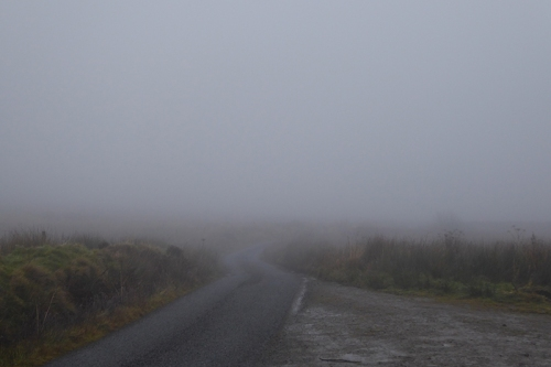 mist at Laverock